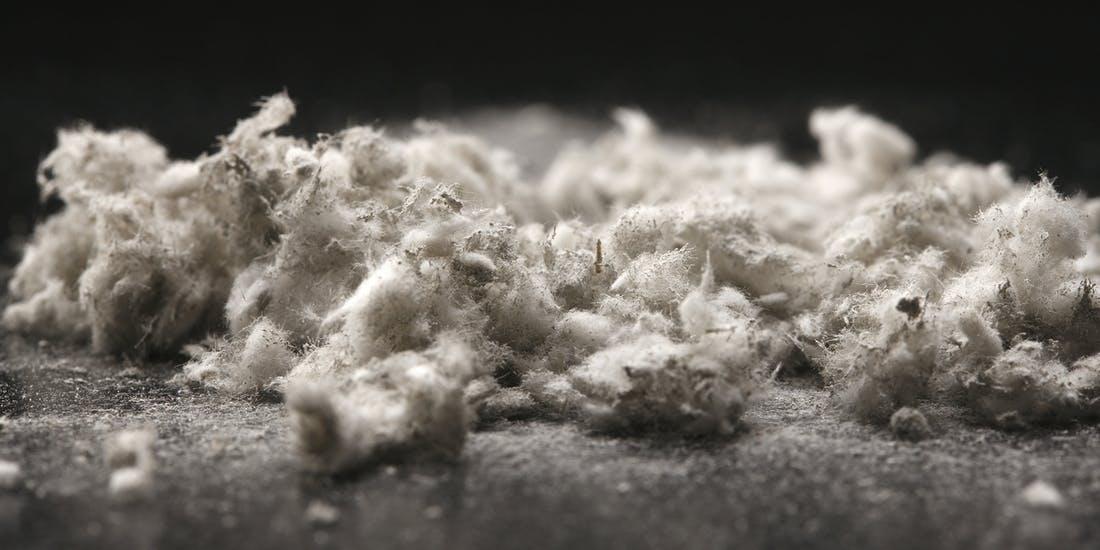 Photo resources asbestos